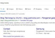 Sitelink blog Muha